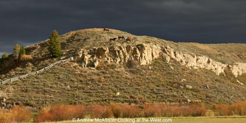 Horses south on Bondurant, Wyoming