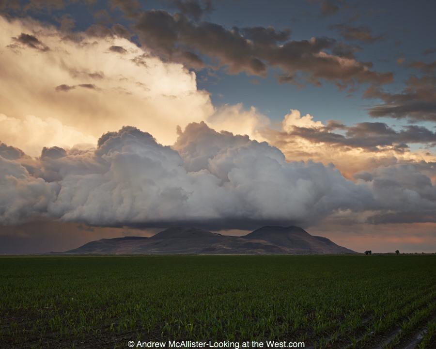 140617_Northern Utah_025
